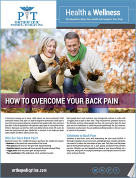Download the Orthopedic Physical Therapy Newsletter Cover